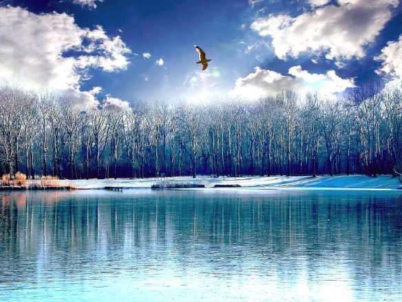 Beautiful Lakes Wallpapers (13)
